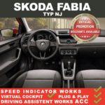 Skoda Fabia III 2